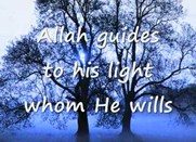 God guides to His Light whom He Wills